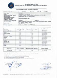 Protelan Analiz Raporu - 03
